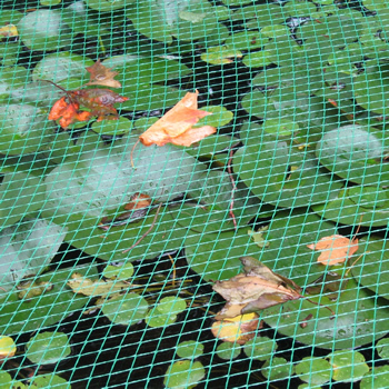 Knitted bird netting is installed over the pond and several leaves on it